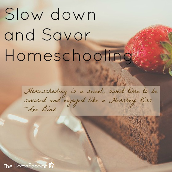 Slow Down and Savor Homeschooling [This is not a race after all]