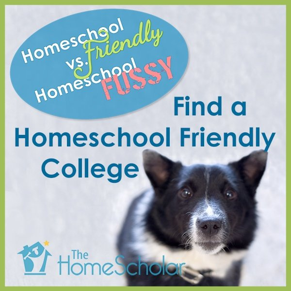#Homeschool Friendly vs. Homeschool Fussy  @TheHomeScholar