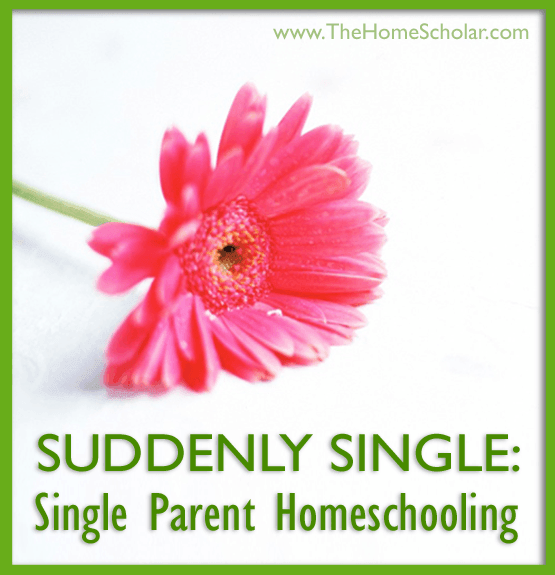 Suddenly Single: Single Parent #Homeschooling @TheHomeScholar